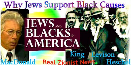 Why Jews Supported Black Causes_Interview with Kevin MacDonald, PhD.