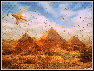 waera - parsha (plagues of Egypt)