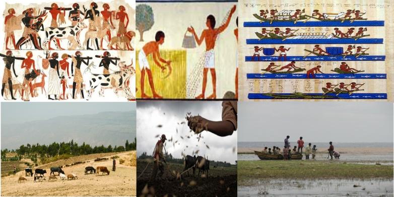 Mirrors of a Hamko-Shemitic culture