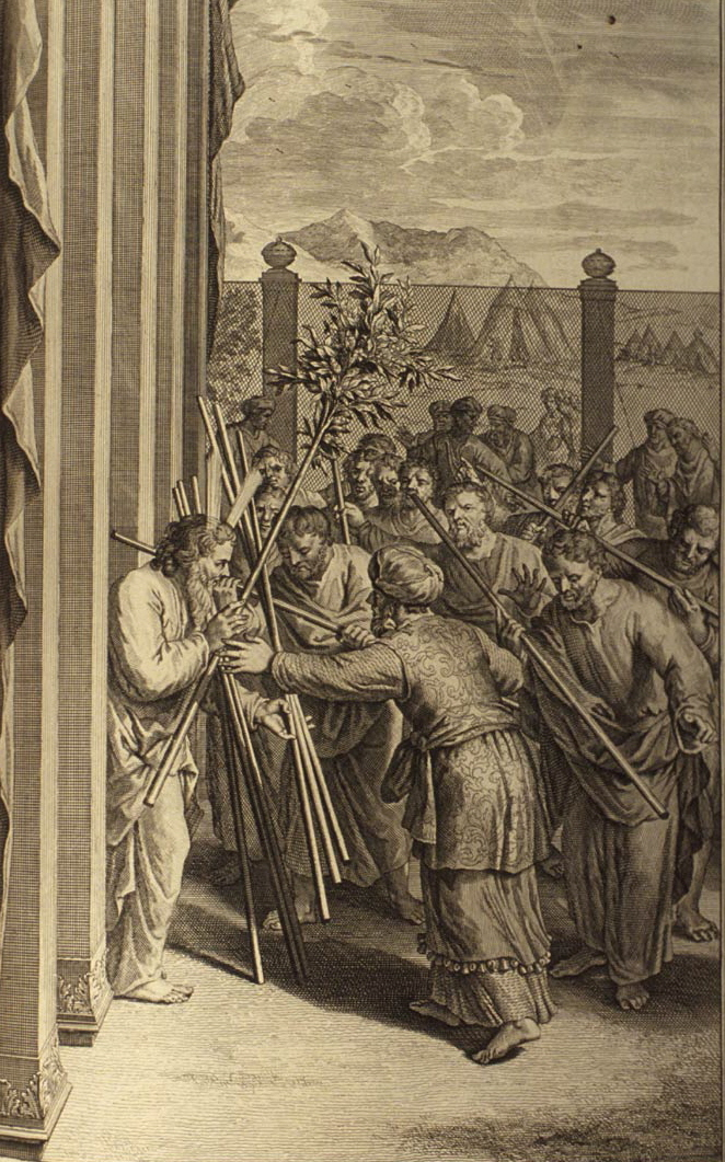 Aaron's Rod Budding (illustration from the 1728 Figures de la Bible)