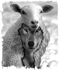 wolves-in-sheep-clothing(false prophets)