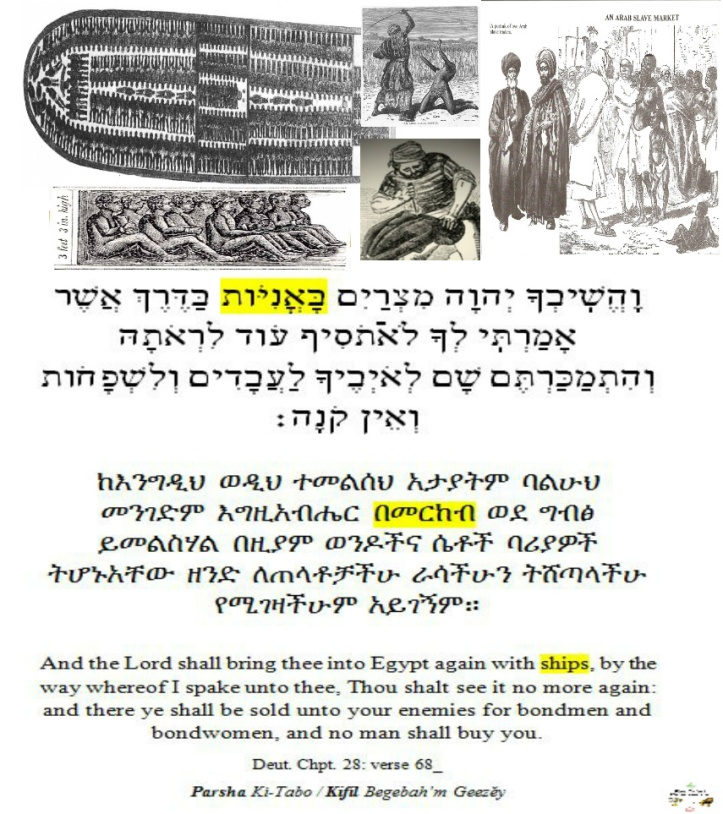 ki tab(v)o - parsha [Curses of Israel]