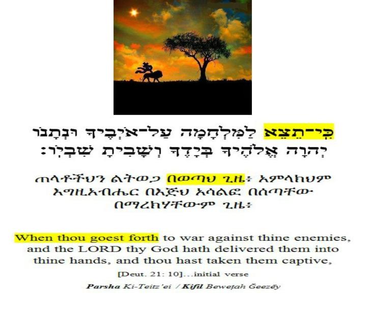 ki tetzei - parsha [opening verse aliya]