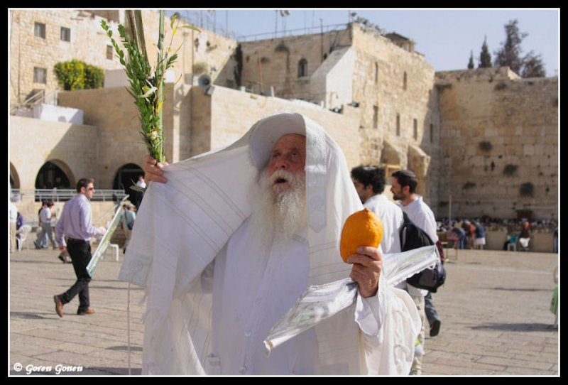 Sephardic Jew on the Hebraic celebration of Hoshanna Raba.