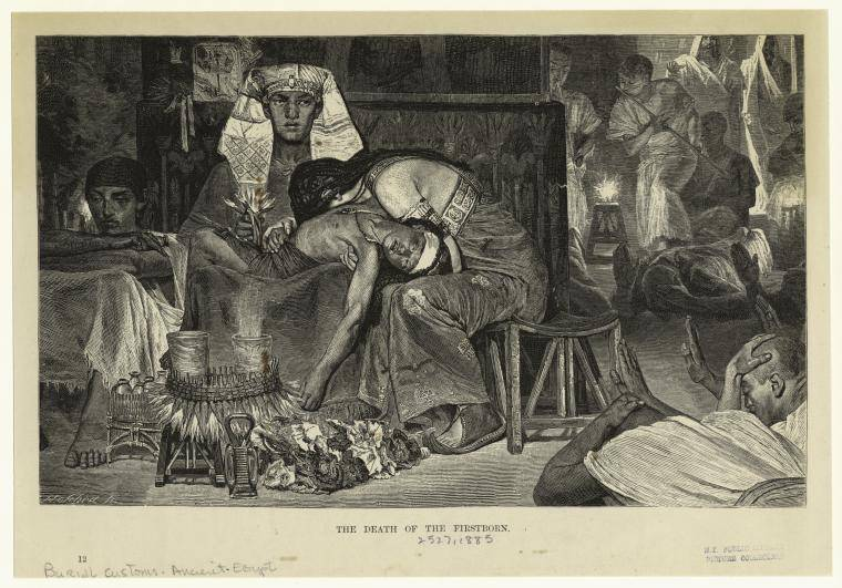 bo - parsha (plague death of the 1stborn)