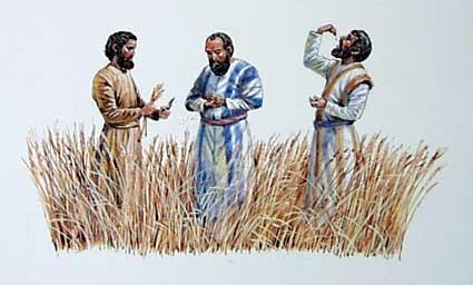 disciples-eating-grain